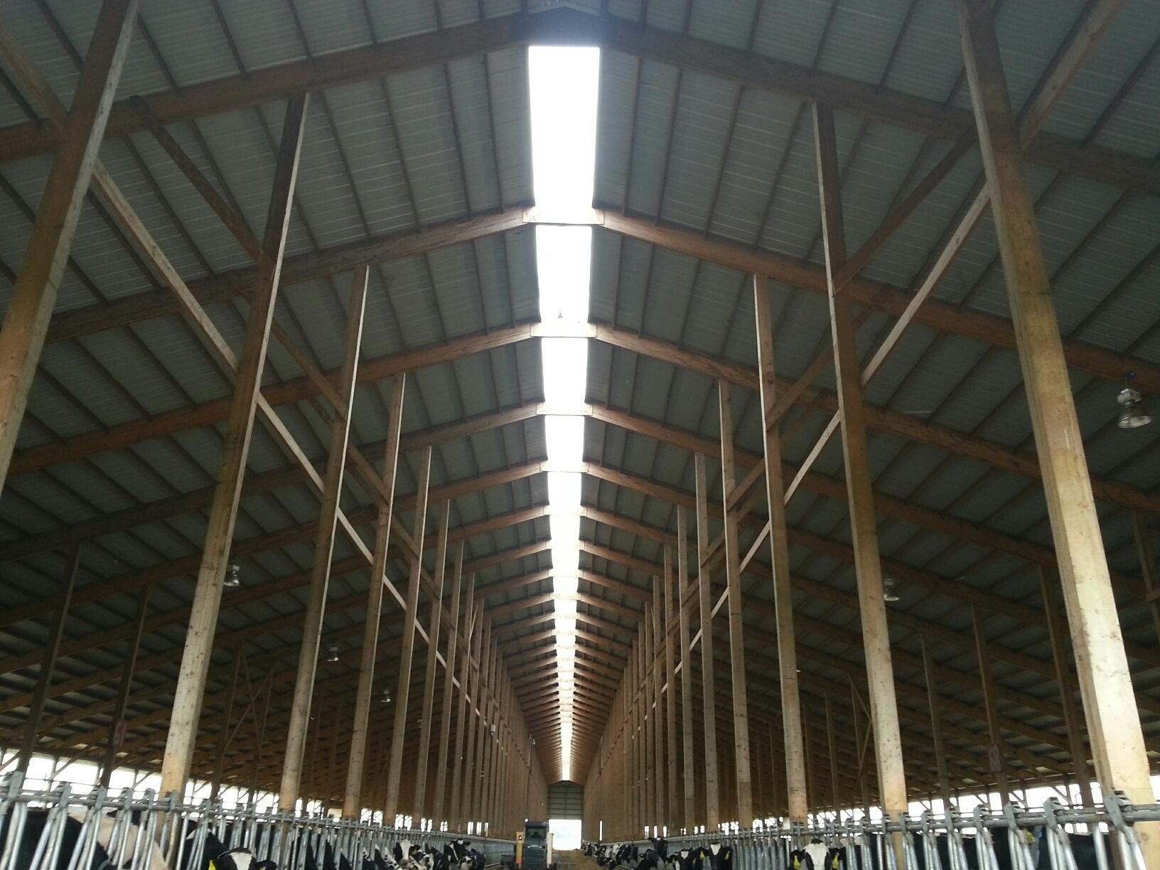 Titan Timbers Freestall Barn